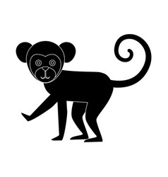Titi monkey isolated icon vector