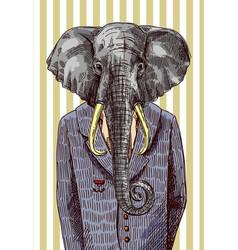 elephant in jacket vector image vector image