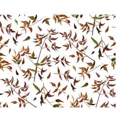 Seamless pattern leaf red orange yellow green vector