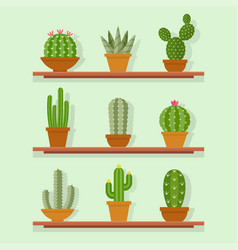 Cactus icon in a flat style vector