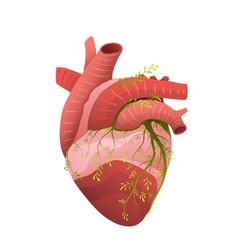 Healthy heart organ metaphor flat vector
