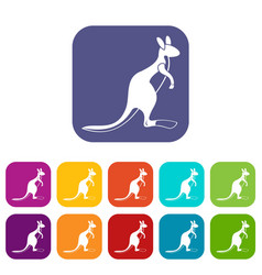 kangaroo icons set flat vector image