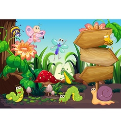 Scene with different types of bugs vector image