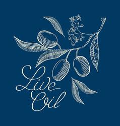 botanical sketch live oil blue concept vector image vector image