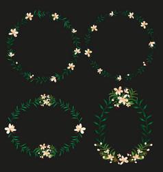 floral border set vector image