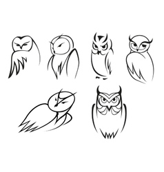 Owl bird icons in doodle outline style vector image