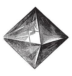 Spinel vintage engraving vector