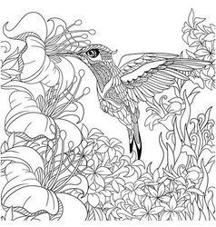 Zentangle stylized cartoon hummingbird vector image