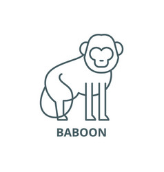 baboon line icon baboon outline sign vector image