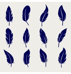 Ball pen feather sketch set vector