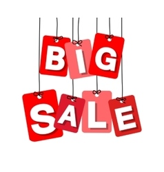 colorful hanging cardboard Tags - big sale vector image