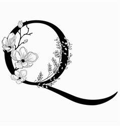 Hand drawn floral uppercase q monogram and vector