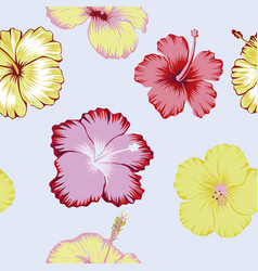 hibiscus flowers abstract color seamless vector image