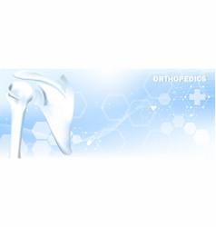 Medical orthopedic shoulder bone vector