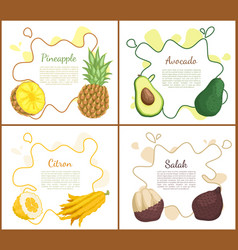 pineapple and avocado posters vector image