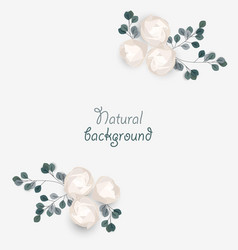 romantic background with roses and leaves vector image