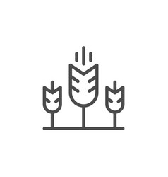 wheat field line outline icon vector image