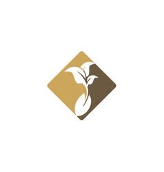seed bean farm plant organic logo vector image