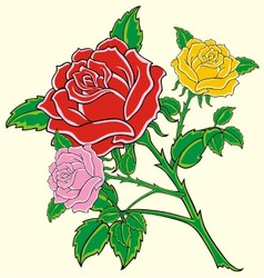with red rose vector image