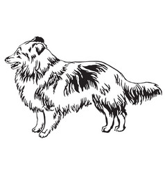 Decorative standing portrait of dog sheltie vector