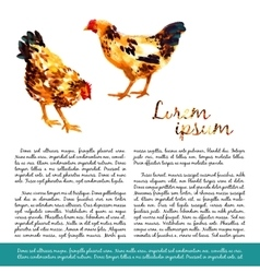 Design template with watercolor hens vector