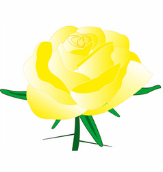 rose yellow with thorn vector image