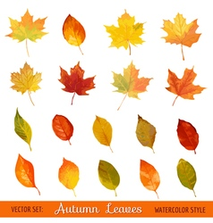 Set Colorful Autumn Leaves - in Watercolor Style vector