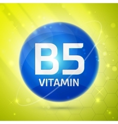 Vitamin B5 icon vector image