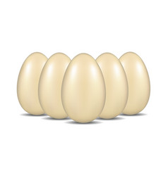 eggs with shadow standing in the formation vector image