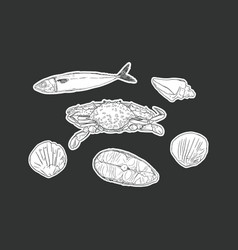 set of seafood isolated vector image vector image