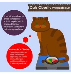Cats obesity vector