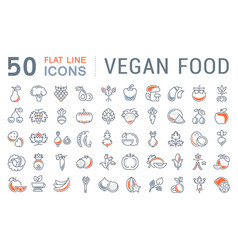 set flat line icons vegan food vector image vector image