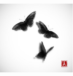 black butterflies hand drawn with ink on white vector image
