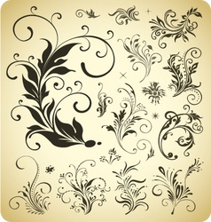 Design ornament elements vector