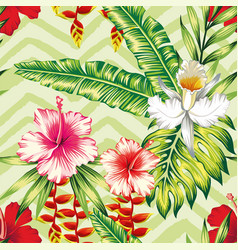 hibiscus palm leaves orchid pattern vector image