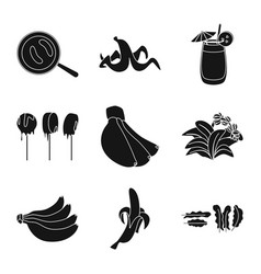 Isolated object vitamin and eating icon set of vector