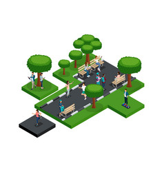 quality isometry part of the park with trees vector image
