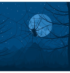 spider on a web against the night sky a vector image
