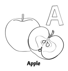 Alphabet letter a coloring page apple vector
