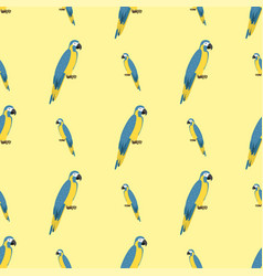 Cartoon tropical parrot wild animal bird seamless vector