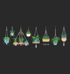 Collection macrame hangers for potted plants vector
