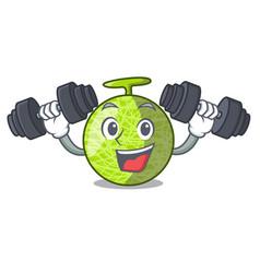 Fitness fresh melon isolated on character cartoon vector