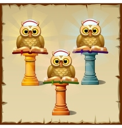 Three owls with books sitting on the podium vector