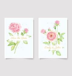 watercolor pink rose flower branch bouquet vector image