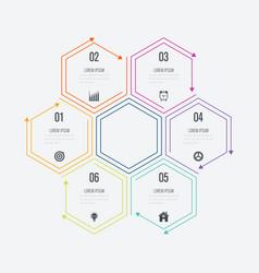 Infographics six options vector