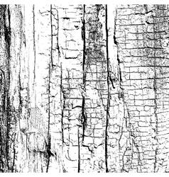 Dry wood vector