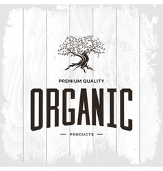 Olive tree vintage logo concept isolated vector image