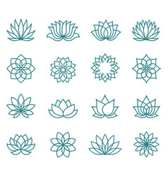 abstract lotus flower icons vector image
