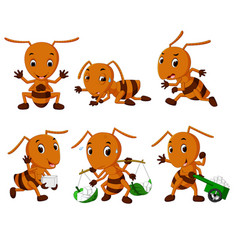 collection of ant cartoon vector image