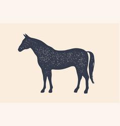 horse stallion concept design farm animals vector image